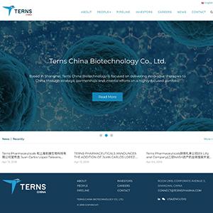 Terns China网站设计