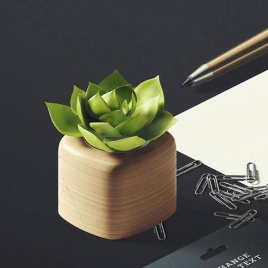 竹子建站网站模板-品牌设计网站模板